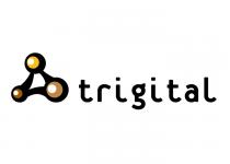 trigittal